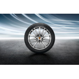 Летние колеса Porsche Panamera G2 (2016) R20 Panamera Design