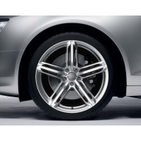 Диск колесный Audi RS6 C6 (R20)